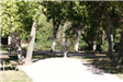 Spearfish City Campground Site 50